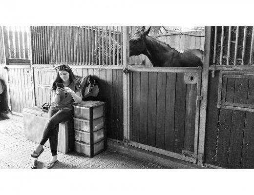 Francesca, Country Frantics Equine & Country Blog